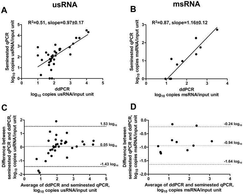 Quantification of usRNA and msRNA in patient samples. (A, B) Correlations between ddPCR and seminested qPCR measurements of usRNA (A) and msRNA (B) in patient samples are shown. The units of measurement are log 10 copies RNA per input unit (4 µl of input cDNA) for both ddPCR and qPCR. Samples that were undetectable with both methods (n = 1 for usRNA and n = 8 for msRNA) are not shown. (C, D) Bland-Altman plots comparing the ddPCR and seminested qPCR measurements of usRNA (C) and msRNA (D) in patient samples. Mean differences and 95% Limits of Agreement are shown on the graphs.