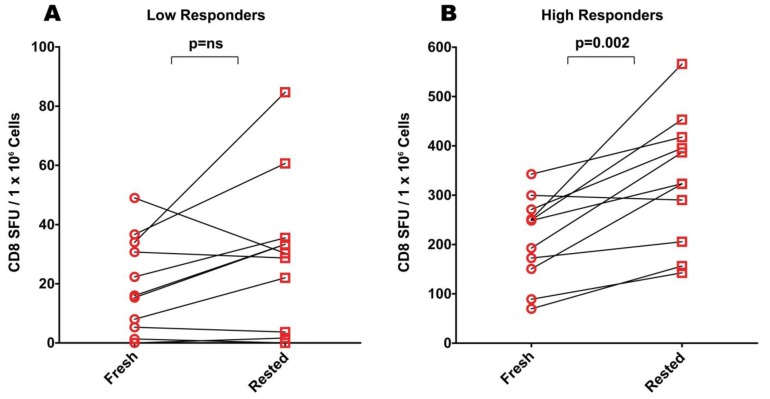 "Comparison of CEF responses elicited by freshly thawed (""fresh"") and rested cryopreserved PBMC in ELISPOT assays. ( A ) CEF-specific responses among ""low responders"" who were defined as subjects who had fewer than 50 SFU in freshly thawed PMBC. ( B ) CEF-specific responses among ""high responders"" who were defined as subjects who had greater than 50 spots forming units (SFU) in freshly thawed PMBC. Data points obtained from the same donor before and after resting are connected by a line. Each data point represents the mean of triplicate antigen-stimulated wells. For each donor and antigen tested, the standard deviation was"