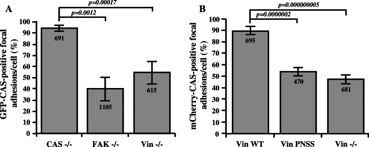 CAS localization in focal adhesions is dependent on FAK and vinculin. The bar graphs show the percentage of focal adhesions stained positive for GFP–CAS ( a ) or for mCherry-CAS ( b ). Focal adhesions were considered CAS-positive if the GFP–CAS or mCherry-CAS signal is at least double the signal in cytoplasm, adjacent to the focal adhesions, indicated by paxillin staining. Numbers in columns indicate number of analyzed focal adhesions and error bars represent standard deviation