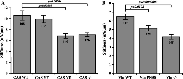 Effect of CAS–vinculin interaction on cell mechanical properties. Stiffness of MEFs analyzed at 6nN force using magnetic tweezers. The bar plots show stiffness of a CAS−/− MEFs re-expressing indicated CAS variants and b Vin−/− MEFs re-expressing indicated vinculin variants. Numbers in columns indicate number of analyzed cells, and error bars represent standard error