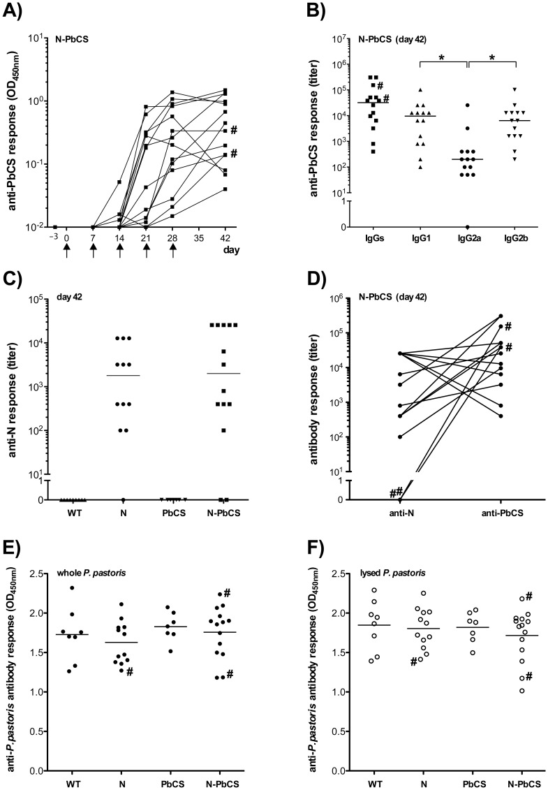 Humoral responses elicited in mice after immunization. ( A ) Kinetics of anti-PbCS IgG responses in mice immunized with N-PbCS yeasts. OD 450 nm are expressed in log 10 scale. Black arrows indicate immunization schedule. ( B ) Isotyping of humoral IgG responses at day 42 in mice immunized with N-PbCS. The bars correspond to median values per group. Asterisks (*) indicate significant median differences (p