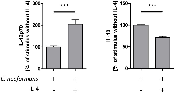 IL-4 induces IL-12 and inhibits IL-10 secretion by conventional dendritic cells stimulated with C. neoformans . Conventional BMDCs were generated from bone marrow cells by incubation for 8 to 10 days in the presence of GM-CSF. After harvesting, the cells were stimulated with C. neoformans 1841 (MOI 10) in the presence or absence of IL-4 (25 U/ml) for 48 h in duplicates. Supernatants were collected and analyzed for the production of IL-12p70 (n = 3) and IL-10 (n = 4) by sandwich ELISA. The mean of the duplicates without IL-4 was set at 100% and the percentage of each value was calculated in relation to this mean. In a representative experiment 199.5 m±15.5 pg/ml IL-12p70 and 857.5±7.5 pg/ml IL-10 vs. 391.5±2.5 pg/ml IL-12p70 and 696±21 pg/ml IL-10 (mean ± SD) were produced after stimulation with C. neoformans in the absence or presence of IL-4, respectively. When incubating cells only in the presence of IL-4 neither IL-12p70 nor IL-10 was detectable (not shown). Data are expressed as the mean ± S.E.M. Statistical analysis was performed by using the unpaired Student's t-test. *** P