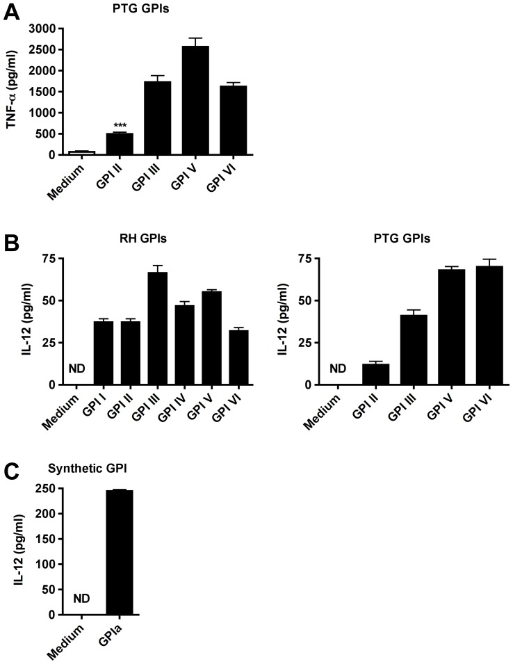 GPIs of RH and PTG strains induce TNF-α and IL-12p40 secretion by macrophages. ( A ) Macrophages were incubated for 24 h with medium alone, or with individual GPIs of the PTG strain extracted from 1×10 8 parasites and assayed for TNF-α cytokine production. ( B ) Macrophages were incubated for 24 h with medium alone, or with individual GPIs of the RH (left panel) and the PTG strain (right panel) extracted from 2×10 8 parasites, respectively, and assayed for IL-12p40 cytokine production. ( C ) Macrophages were incubated for 24 h with medium alone, or with GPIa (3 mM), a chemically synthesized structure of RH strain GPI III core glycan and assayed for IL-12p40 cytokine production. *** P