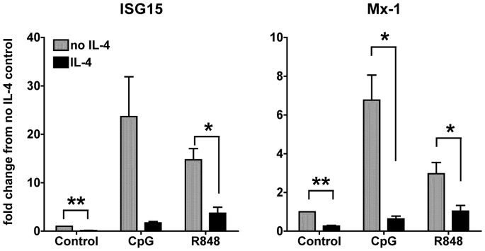 IL-4 suppresses the expression of TLR7- and 9-induced IFN-responsive gene expression. We treated cDCs at day 6-7 of culture with IL-4 or left them untreated for 24 h. We then stimulated the cDCs with CpG 1826 (10 ug/ml) or R848 (1 ug/ml) for 6 h and then analyzed by qPCR the expression of the IFN-responsive genes ISG15 and Mx-1. All of the conditions were normalized against the control (untreated DCs in medium only) in each experiment. Results are average of three independent experiments, performed with three independent bone marrow-derived cultures from 3 different mice; * p