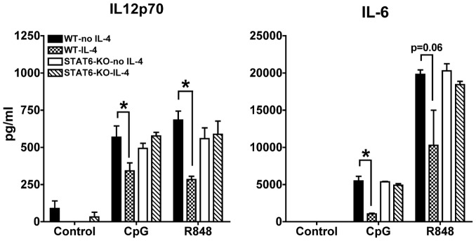 IL-4 suppression of pro-inflammatory cytokines is STAT6-dependent. We measured by ELISA the levels of IL-6 and IL-12p70 in the supernatants of cDC cultures from wild type and STAT6-KO mice treated or not for 24 h with IL-4 and then stimulated with CpG or R848 for 6 h (IL-6) or 48 h (IL-12p70). Averages and SE of three independent cultures are shown (* p