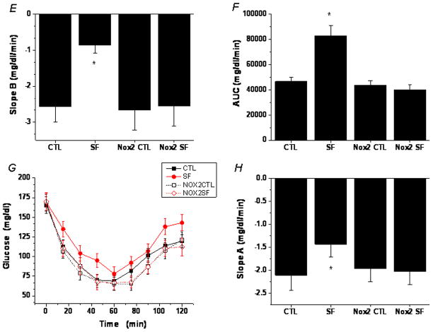 SF-induced increases in global macrophage numbers in visceral fat of wild-type, but not Nox2-deficient mice A. A representative flow cytometry analysis showing a moderate increase in the number of F4/80 + CD11b + macrophages in visceral fat of a WT mouse exposed to SF for 2.5 weeks. This phenomenon was absent in Nox2-deficient gp91 phox-/Y mice. B. Summary of 4 independent flow cytometry experiments. Data are mean ± SE; n=4 for each group.