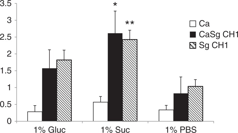 Sucrose promotes dual biofilm development under static conditions. C. albicans SC5314 (Ca) and S. gordonii CH1 (Sg CH1) were allowed to form single and dual static biofilms for 24 h, in 96 well plates, in salivary flow media supplemented with 1% sucrose (wt/vol), 1% glucose (wt/vol) or 1% PBS control (vol/vol). Biofilm biomass was measured using the crystal violet assay. *p=0.0002 and **p=0.005 for a comparison between sucrose and glucose.