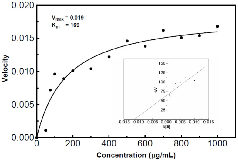 Michaelis-Menten and Lineweaver-Burk plots of <t>RNase</t> activity. The K m value was estimated to be 169 with a V max of 0.019. The acid soluble assay at 55 °C with varying <t>RNA</t> substrate concentrations was used to determine the velocities. The data was then converted to generate the Lineweaver-Burk plot.