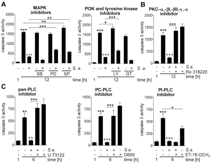 S. aureus induces prolonged PMN survival via PC-PLC, PI3K and PKC. PMNs were pretreated with (A) 5 µM SB202190 (SB), 20 µM PD98059 (PD), 20 µM SP600125 (SP), 25 µM genistein (GT), 25 µM LY294002 (LY), (B) 2 µM Ro 318220, (C) 4 µM U-73122, 10 µM Et-18-OCH 3 or 50 µM D609 for 1 h followed by 30 min infection with S. aureus strain Newman at MOI 10∶1 and an additional incubation for indicated time points in gentamicin-containing medium. Caspase 3 activity of cell lysates in rate of FU was determined. Data are presented as mean with SEM (N = 4); * p