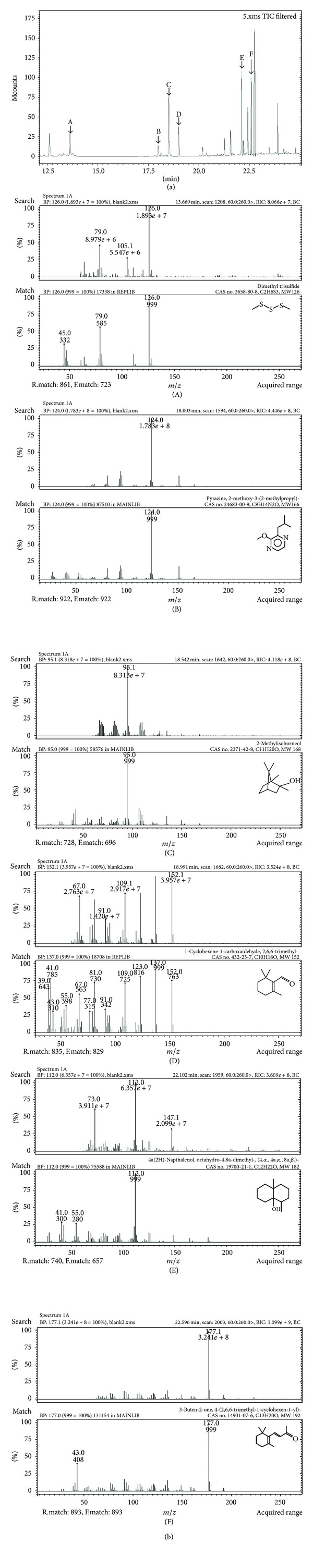 (a) MS-chromatogram of water sample (total ion current of the MS in the select ion mode) and (b) mass spectra of the six target compounds. Shown are (A) DMTS , (B) IBMP , (C) 2-MIB , (D) β -cyclocitral, (E) GSM , and (F) β -ionone for both (a) and (b).
