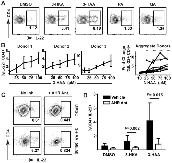 3-HKA and 3-HAA promote IL-22 expression in stimulated human CD4 + T cells. (A) Flow cytometric analysis of CD4 + T cells following stimulation of human PBMCs in the presence of 100 µM 3-HKA, 3-HAA, PA, or QA for six days. Data represent at least three independent experiments. (B) Flow cytometric analysis of CD4 + T cells from individual and aggregate donors following stimulation of PBMCs in the presence of increasing concentrations of 3-HAA (µM) for six days. Individual donor data are pooled from at least three independent experiments. Error bars indicate SD. Fold change in IL-22 expression versus vehicle control is statistically different from 1 (Wilcoxon signed rank test; *, p = 0.0312; **, p = 0.0078; N = 8 donors). (C) Flow cytometric analysis of CD4 + T cells following stimulation of human PBMCs in the presence of 3-HAA +/− the AHR antagonist, CH-223191. Data are representative of at least three independent experiments. (D) Comparison of IL-22 production in CD4 + T cells following stimulation of human PBMCs in the presence of DMSO, 3-HKA (50 µM), or 3-HAA (50 µM), with or without an AHR antagonist, N = 6. P values were calculated by Mann-Whitney. Error bars indicate SD.