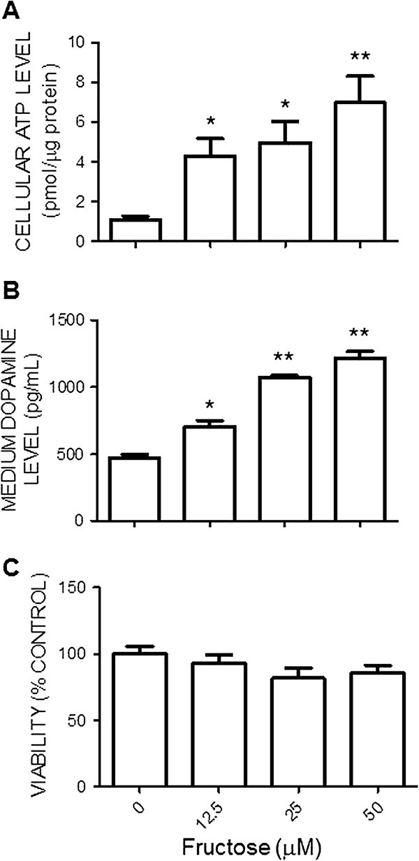 Fructose increases cellular ATP levels and the release of dopamine from the Neuro 2a cells. The cellular ATP contents (A) , levels of dopamine in culture medium (B) and cell viability (C) of the N2a cells determined at 72 hours after exposure to different concentrations of fructose (0, 12.5, 25, or 50 μM). Values are mean ± SEM of quadruplicate analyses. * P
