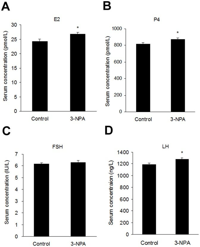 Serum levels of reproductive hormones in 3-NPA-treated mice. The serum levels of estradiol (E2) (A), progesterone (P4) (B), follicle-stimulating hormone (FSH) (C) and luteinizing hormone (LH) (D) were determined by ELISA in control and 3-NPA-treated mice. Data show the means ± SEM (n = 10). *P