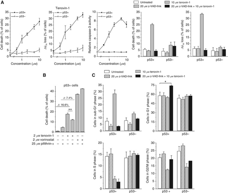 Antineoplastic effects of tenovin-1 in HCT-116 p53+ and p53− cells. Cells were exposed to tenovin-1 for 24 h (caspase-3 activity) or 48 h (other read-outs). z-VAD-fmk was applied 1 h before treatment with tenovin-1 ( A , C ). ( A ) Cell death and Δ ψ m were determined by flow-cytometric analyses of PI uptake or DiOC 6 (3) staining, respectively; caspase-3 activity was determined using the fluorogenic substrate Ac-DEVD-AMC, relative caspase-3 activities are the ratio of treated cells to untreated cells. ( B ) Pifithrin- α was applied 1 h before treatment with tenovin-1 or vorinostat; cell death was determined by flow-cytometric analysis of PI uptake. ( C ) Cell-cycle profiles were determined by flow cytometry. Means ±s.e.m. of each three separate measurements are shown. * P