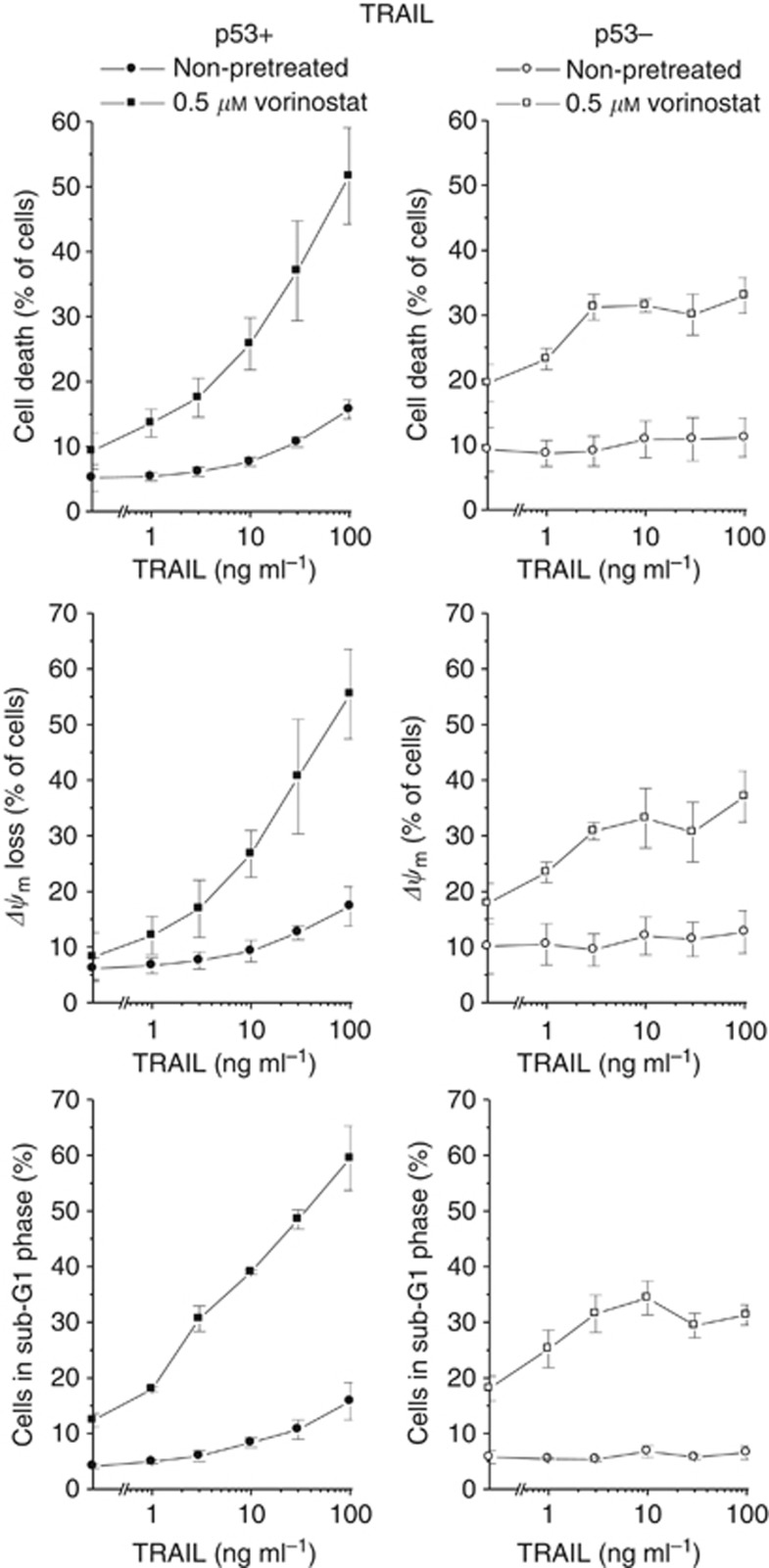 Antineoplastic effects of vorinostat in combination with TRAIL in HCT-116 p53+ and p53− cells. Four hours after administration of vorinostat, cells were exposed to TRAIL for 48 h. Cell death and Δ ψ m were determined by flow-cytometric analyses of PI uptake or DiOC 6 (3) staining, respectively. Cells in sub-G1 phase were determined by flow-cytometric cell-cycle analysis. Means ±s.e.m. of each three separate measurements are shown.