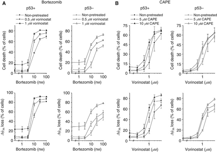 Antineoplastic effects of vorinostat in combination with bortezomib or CAPE in HCT-116 p53+ and p53− cells. ( A ) Four hours after administration of vorinostat, cells were exposed to bortezomib for 48 h. ( B ) One hour after administration of CAPE, cells were exposed to vorinostat for 48 h. Cell death and Δ ψ m were determined by flow-cytometric analyses of PI uptake or DiOC 6 (3) staining, respectively. Means ±s.e.m. of each three separate measurements are shown.