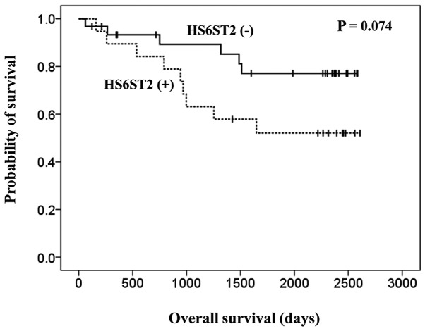 Kaplan-Meier curves for overall survival. Patients were divided into two groups according to their heparan sulfate 6- O -sulfotransferase-2 (HS6ST2) expression status (dotted line, HS6ST2-positive group; straight line, HS6ST2-negative group). The P-value was calculated using the log-rank test.