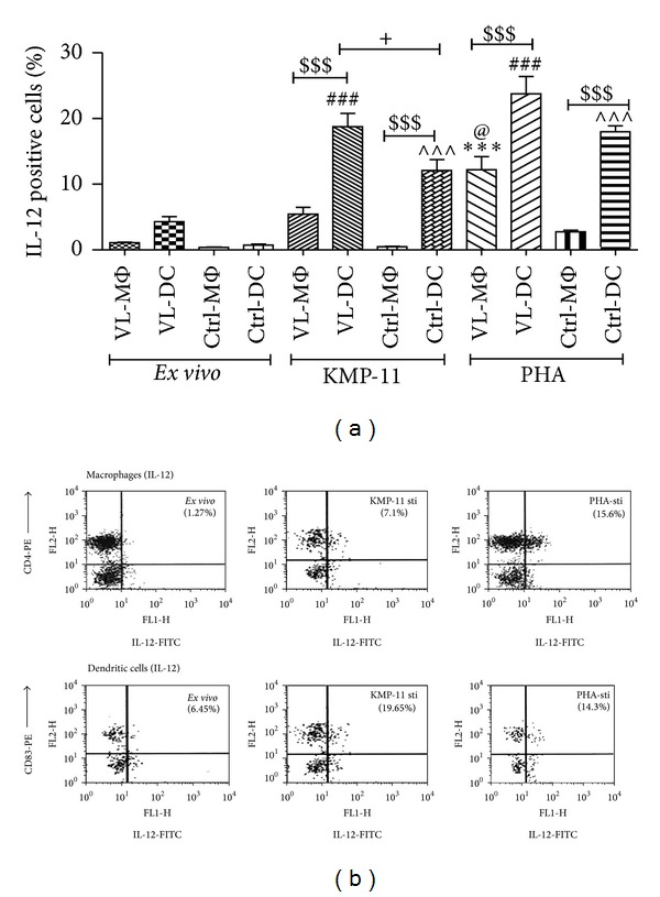(a) IL-12 release by MΦ and moDC after KMP-11 and PHA stimulation. (a) Comparison of cytokine production by APCs after costimulation by KMP-11. 1 × 10 6 /mL of either CD14+ MΦ or CD83+ moDCs was stimulated with KMP-11 (10 μ g/mL) and PHA (10 μ g) for 16 h. Harvested cells were consecutively coincubated with Bref-A (1 μ g/mL), surface CD-4 (PE)/CD-83 (PE) antibodies, and cytofix/Perm solution before cytoplasmic staining with FITC for IL-12 and acquired and analyzed on FACS-calibur. Values were expressed in mean ± SEM. Each sample was run in duplicate. *** P