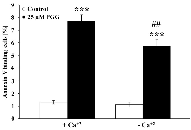 Effect of penta- O -galloyl-β- d -glucose (PGG) on phosphatidylserine exposure in the presence and absence of extracellular Ca 2+ . Arithmetic means ± SEM ( n = 8) of the percentage of annexin V binding erythrocytes after a 48-h treatment with Ringer solution without (white bar) or with (black bars) 25 µM penta- O -galloyl-β- d -glucose in the presence (left bars, Plus Calcium) and absence (right bars, Minus Calcium) of calcium. *** ( p