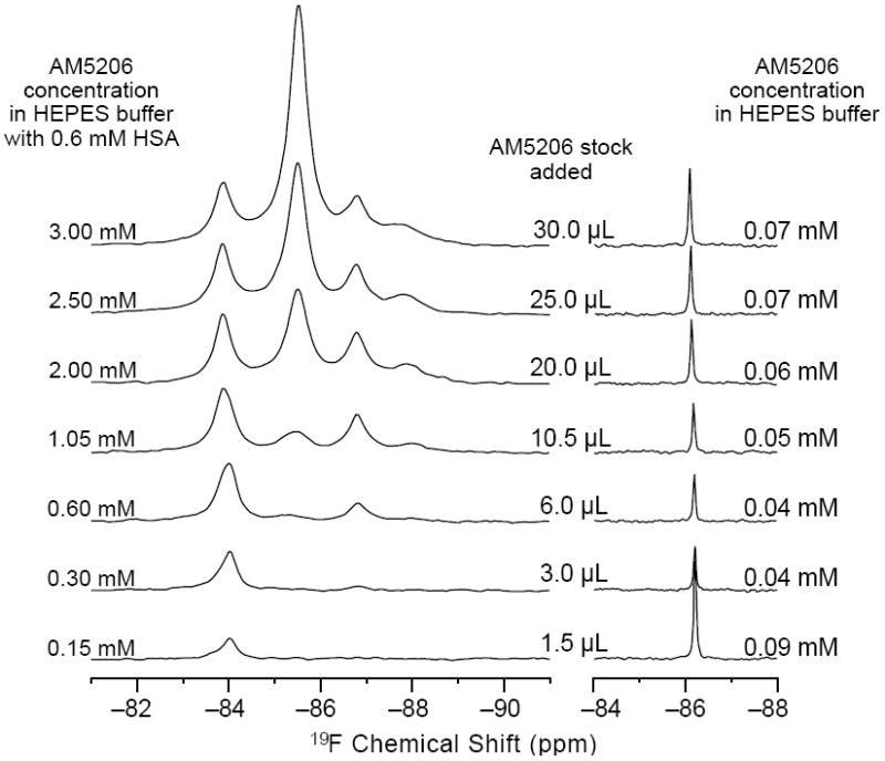 Left: 19 F- NMR titration experiments of AM5206 into 0.6 mM HSA solution. Right: 19 F-NMR spectra by adding the same amounts of AM5206 stock solution (50 mM in DMSO) into 500 μL HEPES buffer. The ligand concentrations listed in each spectrum reflect the soluble fraction of AM5206 as obtained by integrating the 19 F-NMR signals (cf. Figure 4 ).