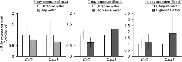 Effect of inhalation of particles released from ultrasonic humidifier on mRNA expression of Ccl2 , and Cxcl1 in the lung. Expression levels of Ccl2 and Cxcl1 in the lung tissues (Experiments 3–5, Table 1 ) were analyzed by an Mx3000P (Agilent Technologies) with <t>SYBR</t> Green <t>Realtime</t> <t>PCR</t> Master Mix (Toyobo). Relative expression levels of the target genes were calculated for each sample after normalization against Gapdh . Statistical analysis was performed using an unpaired t -test and the level of significance was set at P