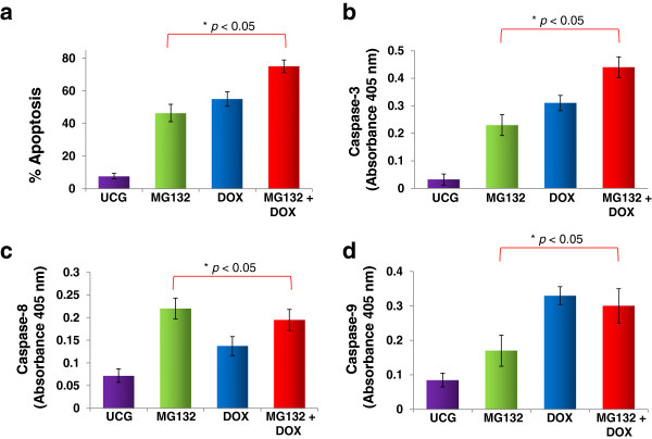 Apoptosis and caspase activity in U937 cells treated with Doxorubicin (DOX), MG132, or MG132 + DOX. U937 cells were incubated alone or in combination with MG132 (1 μM), DOX 1 μM, or MG132 + DOX for 24 h at 37°C in a humid atmosphere containing 5% CO 2 in RPMI-S culture medium. After incubation, the cells were washed and apoptosis was assessed by flow cytometry using Annexin V-fluorescein isothiocyanate (FITC) (a) . For each sample, at least 20,000 events were acquired in a FACSAria-I cell sorter and the data were analyzed with FACSDiva software. The activity of caspase-3 (b) , -8 (c) , and −9 (d) was evaluated utilizing a caspase colorimetric staining kit. The results represent the mean ± the Standard deviation (SD) of three independent experiments performed in triplicate. Statistical analysis was performed by means of the Mann–Whitney U test. ●p