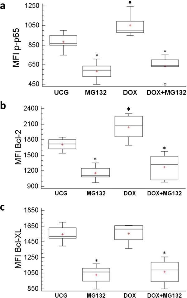 Determination of phosphorylated p65 (NF-кB subunit), Bcl-2 and bcl-XL in U937 human leukemic cells treated in vitro with Doxorubicin (DOX), the MG132 proteasome inhibitor, and MG132 + DOX. U937 cells were incubated, alone or in combination, with DOX 1 μM, MG132 (1 μM), or MG132 + DOX. After 1 h, the cells were harvested and the phosphorylated p65 protein was determined by flow cytometry (a) . U937 were treated with MG132, DOX or it´s combination after that the cells were harvested and the Bcl-2 (b) and Bcl-XL (c) antiapoptotic proteins were determined by flow cytometry. An appropriate isotype control was utilized to adjust background fluorescence. The graphs show the Mean fluorescence intensity (MFI) of p65, Bcl-2 or Bcl-XL. For each sample, at least 20,000 events were acquired in a FACSAria-I cell sorter and the data were analyzed with FACSDiva software. Results represent the mean ± the Standard deviation (SD) of three independent experiments carried out in triplicate. ♦ p