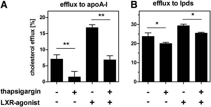 ER stress reduces cholesterol efflux. HepG2 cells were trace-labeled with 3 H-cholesterol. Cholesterol efflux was measured for 24 h in media containing 2 mg/ml fatty acid-free BSA and 10 µg/ml apoA-I with or without 0.1 µM thapsigargin or 5 µM of the LXR agonist T0901317 (A). Alternatively, cholesterol efflux measurements were performed in media containing 10% LPDS with or without thapsigargin or T0901317 (B). Under both conditions, thapsigargin treatment reduces cholesterol efflux, even in the presence of the synthetic LXR agonist. Data show means ± SD from three experiments.