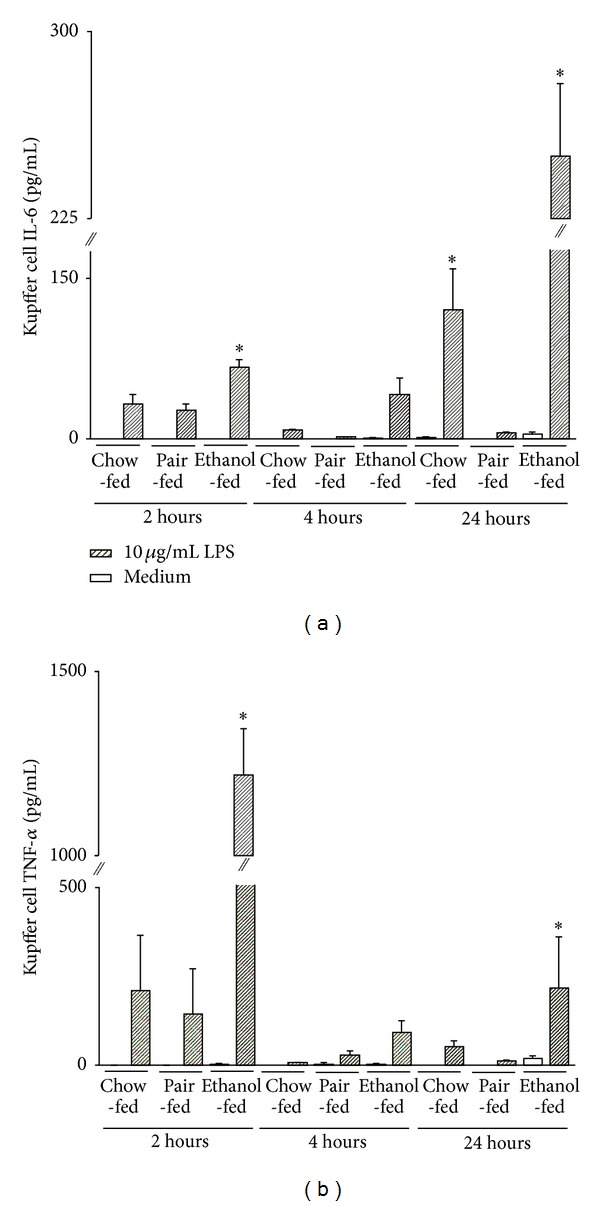 Proinflammatory cytokine production of F4/80 − hepatic macrophages following ethanol feeding in response to LPS or TNF- α . Kupffer cells were isolated from cis -NF- κ B EGFP mice after 4 weeks of pair feeding regime, as described in Section 2 , and stimulated with 10 μ g/mL LPS or 500 ng/mL TNF- α . Culture supernatants were collected at 2 h, 4 h, and 24 h after stimulation. IL-6 (a) and TNF- α (b) were measured by cytometric bead array (CBA). Data (mean ± SEM) are representative of five to eight independent experiments. * P