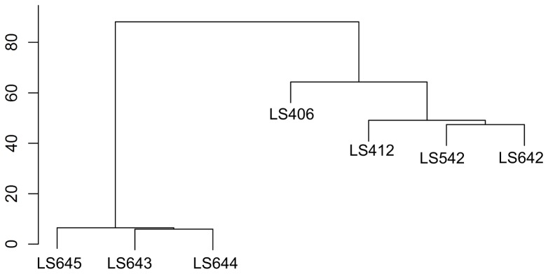 Hierarchical clustering based on the Robust Multi Array (RMA) analysis of the L. monocytogenes strains serotypes 4b (LS406, LS412) and IVb-v1 (LS542, LS642, LS643, LS644, LS645).