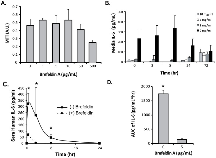Golgi-dependent secretion mechanism of MSC-derived IL-6 in vivo. Brefeldin A pre-treatment of MSCs was used to evaluate blockade of IL-6 release in vitro and in vivo. (A) MTT assay of MSCs treated at different concentrations of brefeldin. A non-toxic dose of 5 ug/ml was used for functional studies. (B) Human IL-6 levels in vitro after brefeldin pre-treatment. Significant reduction in 24 hour release of IL-6 was observed across all doses. (C) Alteration in serum IL-6 delivery by MSCs pretreated with a Golgi-apparatus inhibitor, Brefeldin A. MSCs were incubated with 5 µg/ml of BFA for one day and then injected into C57Bl/6 mice and compared to untreated MSCs in terms of serum IL-6 delivery. Brefeldin treatment of MSCs led to diminished release of human IL-6 in vitro and in vivo. (D) Area-under-curve analysis of human IL-6 after MSC pre-treatment with brefeldin A and transplantation. Exposure to IL-6 was significantly reduced by inhibition of the Golgi apparatus. Time points for serum analyses were 0.5, 8, and 24 hours after cell injection. Mice were serially analyzed as batches of N = 5 per group. * denotes P > 0.01.