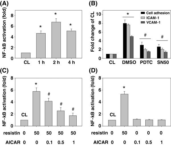 AMPK attenuated resistin-increased SK-Hep1 cell adhesions to HUVECs through activating the NF-κB. (A) SK-Hep1 cells were kept as the control or treated with resistin (50 ng/mL) for 1, 2 and 4 h. (B) SK-Hep1 cells were kept as the control pretreated with DMSO or NF-κB inhibitors, PDTC or SN50, to inhibit activity. They were then treated with resistin (50 ng/mL) for 4 h. (C) SK-Hep1 cells were kept as the control or pretreated with AICAR at different concentrations (i.e. 0, 0.1, 0.5 and 1 ng/ml) for 1 h and then kept as the control or treated with resistin (50 ng/mL) for 4 h. (D) SK-Hep1 cells were treated with resistin (50 ng/mL) or AICAR at different concentrations (i.e. 0, 0.1, 0.5 and 1 ng/ml) for 4 h. *, P