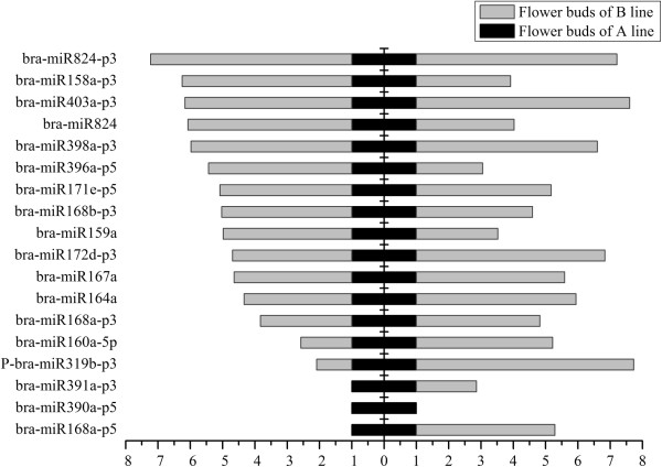 Relative expression analysis of miRNAs in the flower buds of the A line and B line by high-throughput sequencing and qRT-PCR analysis. Relative expression level was normalized to the expression level of 5.8SrRNA in qRT-PCR. All qRT-PCR reactions were prepared in triplicate for each sample. Left indicates the miRNA relative expression level generated from the high-throughput sequencing. Right indicates the miRNA relative expression level obtained by using qRT-PCR analysis.