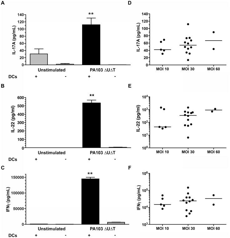 Cytokine production of human memory CD4 + T cells in response to P. aeruginosa . A–C Sorted human memory CD4 + T cells from healthy volunteers were co-cultured either with dendritic cells that had been infected with P. aeruginosa (DCs +) or with the supernatant from such infected DCs (DC −). Levels of IL-17A ( A ), IL-22 ( B ) and IFN-γ ( C ) were measured in supernatants after 6 days. DCs were infected at a MOI of 60 before culturing with T cells. Columns show the mean of triplicate determinations; error bars are ±1 standard error of mean. Results are representative of experiments in three separate individuals. D–F , secreted cytokine levels following DC infection at a variety of different MOIs. Each point represents a value from an individual healthy individual.