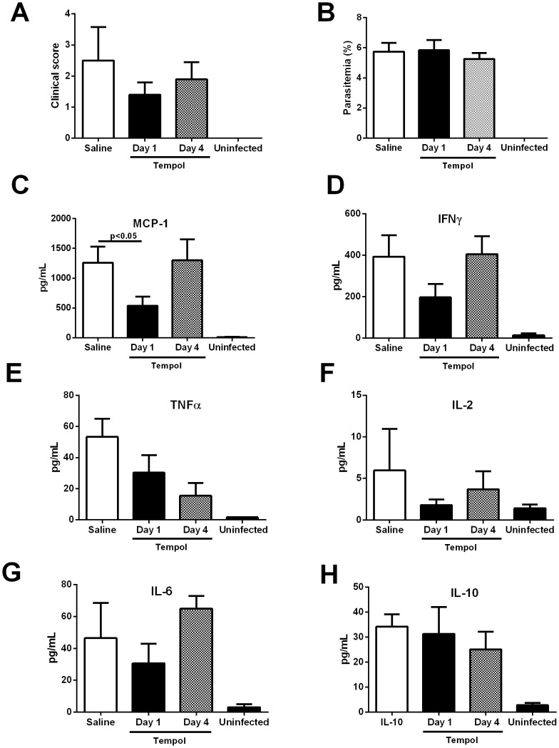 Tempol inhibits MCP-1 plasma levels of mice infected with Plasmodium berghei Anka. P. berghei Anka parasitized red blood cells (10 6 ) ( n = 10) were injected intraperitoneally (i.p.). A, Tempol (20 mg/kg), was started at day 1 or day 4 post infection (p.i.). At day 6 p.i., several parameters were determined including A, clinical score and B, parasitemia (determined by Giemsa-stained smears of tail blood). Serum was collected for determination of C, MCP-1, D, IFN-γ, E, TNF-α, F, IL-2, G, IL-6, and H, IL-10 by enzyme-linked immunosorbent assay as described in Materials and Methods. *, P≤0.05 (analysis of variance, Tukey post test). NS, non-significant. Ten mice were analyzed per group.