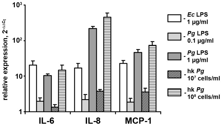 Gene expression levels of pro-inflammatory mediators in hPdLF in response to stimulation with E. coli LPS, P. gingivalis LPS, and heat-killed P. gingivalis . Cells were stimulated with E. coli LPS (1 µg/ml), P. gingivalis LPS (0.1–1 µg/ml), or heat-killed P. gingivalis (10 7 –10 8 cells/ml) for 24 h. Gene expression levels of IL-6 (A), IL-8 (B), and MCP-1 (C) were measured using q-PCR. Y-axes represent the n-fold expression levels of target gene in relation to non-stimulated cells (control).