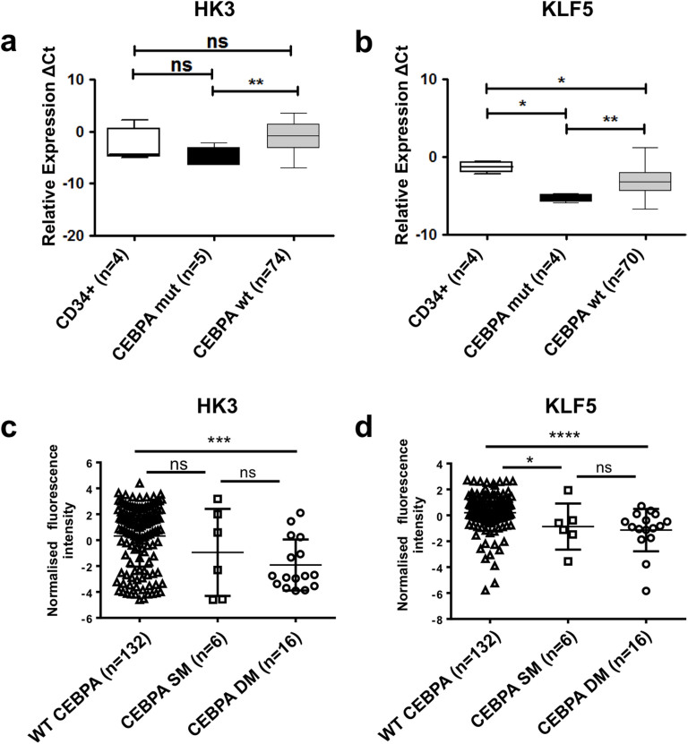 HK3 and KLF5 expression is significantly downregulated in CEBPA -mutated AML patients. HK3 (a) and KLF5 (b) mRNA levels were measured by qPCR in total RNA extracted from primary AML (FAB M0-M7) blasts, CD34 + samples or granulocytes from healthy donors. Patient characteristics are summarized in Supplementary Table 1 . HK3 (c) and KLF5 (d) levels in 154 patients from the Taskesen cohort with normal karyotype, expressing wild type CEBPA (WT), one allele mutated (SM) or two alleles mutated (DM). MWU: *p