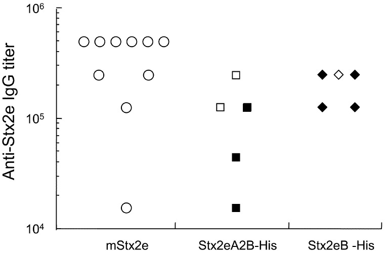Anti-Stx2e IgG titer and lethal toxin-neutralization activity in sera from individual mice immunized i.p. with mStx2e (●), Stx2eA 2 B-His (■) and Stx2eB-His (♦). All serum samples from immunized mice on day 43 were assessed for anti-Stx2e IgG titer as well as ED 50 titer. Open symbols indicate sera that gave ED 50 titers≥2, which was the cut-off for positive Stx2e-neutralizing activity.