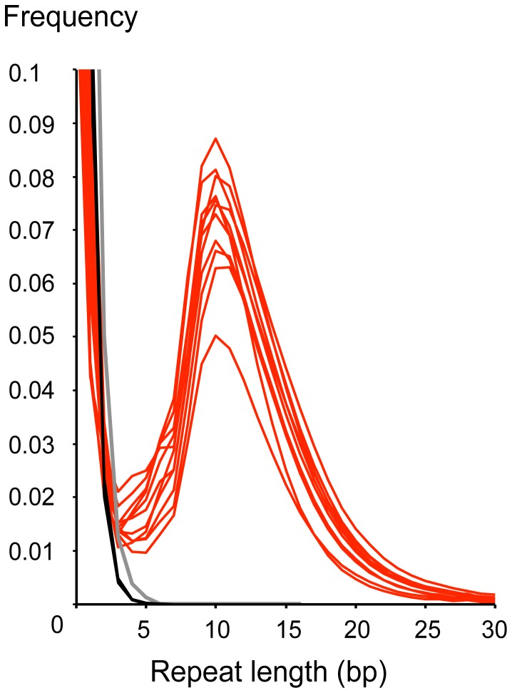 Length distribution of interrupted palindromes at 5′ and 3′-ends in Illumina HiSeq 2000 reads of Atlantic cod ( Gadus morhua ). Reads were generated from 11 historic samples using TruSeq library creation protocols (red lines), four historic samples using <t>Microplex</t> protocols (black lines) and one modern sample using TruSeq protocols (grey line). Terminal palindromic sequences longer than three basepair are rare in the Microplex and modern samples.