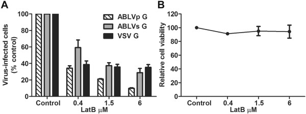Actin is required for ABLV G-mediated viral entry. (A) HEK293T cell monolayers were pretreated with latrunculin B (LatB) diluted in <t>OptiMEM®</t> for 1 hr at 37°C. Cells were then infected with max-GFP encoding rVSV reporter viruses (MOI = 3). Under these conditions, a MOI of 3 yielded at least 50% virus-infected cells in untreated controls. Cells were harvested 8 hrs post infection and analyzed as described in Figure 1 . Drug was maintained for the entire course of infection and its effect on cell viability (B) was determined by trypan blue staining. Reporter viruses that express VSV G were included as a positive control to assess LatB activity. Results are expressed as percent virus-infected cells relative to that of untreated controls and represent 3 independent experiments; error bars are standard error of the mean (SEM).
