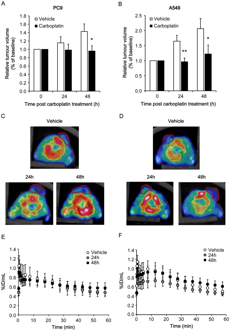 18 F-ICMT-11 PET image analysis of PC9 and A549 xenografts in vehicle and carboplatin-treated mice. A, B: Tumour volumes recorded by calliper measurements of PC9 (A) and A549 tumours (B) pre- and post-carboplatin treatment as indicated. Data shown are mean ± SD of % volume compared to baseline ( n = 4). *, P