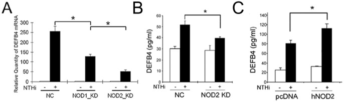 NOD2 contributes to NTHi-induced human β-defensin 2 up-regulation. (A) Quantitative RT-PCR analysis shows that NOD2-specific siRNA inhibits NTHi lysate-induced human β-defensin 2 up-regulation more than NOD1-specific siRNA in the HMEEC cells. ELISA analysis shows that NTHi lysate-induced human β-defensin 2 production is suppressed by the NOD2-specific siRNA (B) but is enhanced by NOD2 overexpression (C) in the HMEEC cells. DEFB4: human β-defensin 2, NC: a control group silenced with a nonspecific negative control siRNA, KD: a group silenced with a gene-specific siRNA, pcDNA: a mock transfection, hNOD2: a construct expressing human NOD2. Results were expressed as fold induction, taking the value of the non-treated group as 1. The experiments were performed in triplicate and repeated twice. Values are given as the mean ± standard deviation (n = 3). *: p
