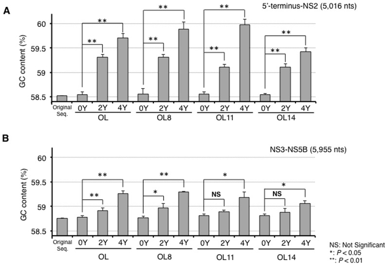 Increased GC content of genome-length HCV RNAs occurring in long-term RNA replication. The GC content of cDNA clones obtained by 0-year, 2-year, and 4-year culture of OL, OL8, OL11, and OL14 cells was calculated. The values indicate the means of 10 clones (OL) or 3 clones (OL8, OL11, or OL14). (A) The 5′-terminus-NS2 regions. (B) The NS3-NS5B regions.