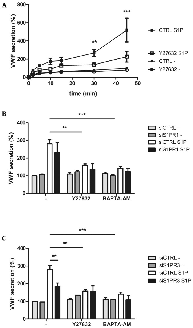Pharmacological inhibition of S1P-induced VWF secretion. CTRL and Y27632 treated HUVECs were incubated for indicated times with 1 μM S1P or SF medium alone (-) (A). (B) siCTRL and siS1PR1 treated HUVECs were incubated for 45 minutes with 1 μM S1P or SF medium alone (-) in the presence of 10 μM Rho kinase inhibitor Y27632 or 100 μM calcium chelator BAPTA-AM. (C) siCTRL and siS1PR3 treated HUVECs were incubated for 45 minutes with 1 μM S1P or SF medium alone (-) in the presence of Rho kinase inhibitor Y27632 or calcium inhibitor BAPTA-AM. The amount of VWF secreted in the medium was measured by ELISA; VWF secreted by unstimulated siCTRL treated cells after 45 minutes was set to 100%. Three independent experiments were performed. Statistical significance was assessed by 2-way ANOVA followed by Bonferroni post-hoc test for selected comparison (***P