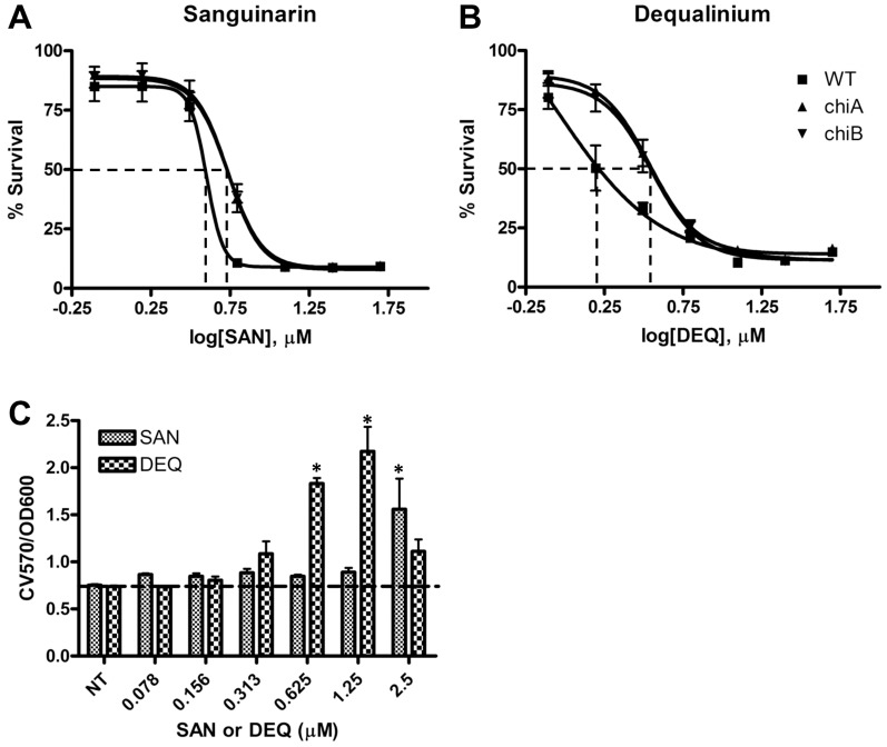 Effect of chitinase inhibitors SAN and DEQ on antibacterial and antibiofilm activity. ( A, B ) Susceptibility of Fn WT and chi mutants to SAN ( A ) and DEQ ( B ). Survival percentage of bacteria was calculated by OD 600 measurements after 24 h incubation with various concentrations of SAN and DEQ in TSBC. The EC 50 s (μM) were determined by GraphPad software as indicated in the bottom table. ( C ) Effect of chitinase inhibitors SAN and DEQ on biofilm formation. Biofilm formation (CV570/OD600) was calculated by normalization with bacterial growth in each concentration of inhibitors. *P
