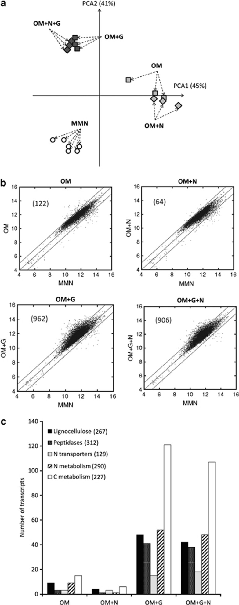 Transcriptional responses in the mycelium of P. involutus when grown in organic matter (OM) extracts, with or without glucose (G) and with or without NH 4 + (N) as shown by microarray analysis. ( a ) Principal component analysis (PCA) was performed on the expression levels of 10 443 transcripts out of 11 528 analyzed on the DNA microarray that had a false-discovery rate of q ⩽0.01. MMN, minimum Melin–Norkrans (that is, mineral nutrient) medium. n =3, except for MMN ( n =6); each point in the PCA represents a replicate. ( b ) Differentially expressed genes in OM versus MMN. The scatter plots show the intensity of the normalized and log 2 -transformed hybridization signals. The diagonal line ( y = x ) shows genes with near identical hybridization signals. The lines at y = x +1 and y = x −1 correspond to a log 2 relative expression between the OM substrates and MMN of +0.5 and −0.5, respectively. The numbers of genes upregulated more than twofold ( q ⩽0.01) are shown in parentheses. ( c ) The numbers of transcripts in various functional categories that were upregulated more than twofold ( q ⩽0.01) in pairwise comparisons of transcription levels after growth in media containing OM versus MMN. The total numbers of transcripts annotated to each functional category among the 11 528 probe sequences are given in parentheses. The significance of the enrichments are shown in Supplementary Table S3 .