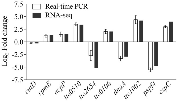 Validation of differentially expressed genes by real-time PCR. Comparison of RNA-seq and real-time PCR measures of changes in expression of eutD (encoding phosphotransacetylase), rpmE (50S ribosomal protein L31), acpP (acyl carrier protein), tte0510 (hypothetical protein), tte2654 (hypothetical protein), tte0106 (hypothetical protein), dnaA (chromosome replication initiator DnaA), tte1002 (hypothetical protein), pspf4 (a transcriptional regulator), and cspC (cold shock protein). All data are shown as means ± SD (n = 3).