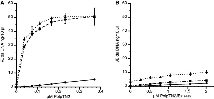 Efficiency of intact PolpTN2 and PolpTN2Δ 311–923 in priming DNA synthesis by T. nautilus PolB and Taq DNA polymerase. T. nautilus PolB (8 ng/µl) or Taq polymerase (0,05 u/µl) were incubated at 70°C in Taq buffer + 0,4 mM dNTP and 2 ng/µl M13mp18 DNA (without annealed primer) with increasing concentrations of either intact PolpTN2 ( A ) or PolpTN2 Δ 311–923 ( B ). DNA synthesis by intact PolpTN2 or PolpTN2 Δ 311–923 alone was included as a control. At t = 0 and 6 min, aliquots were withdrawn, quenched in 25 mM EDTA and assayed for ds DNA using Sybr® Green I fluorescence. Circles, continuous line: PolpTN2 or PolpTN2 Δ 311–923 alone; squares, dashed line: PolpTN2 or PolpTN2 Δ 311–923 plus Taq DNA polymerase; triangles, dotted line: PolpTN2 or PolpTN2 Δ 311–923 plus T. nautilus PolB DNA polymerase. Points are the average of three determinations. The standard deviation is indicated by error bars.