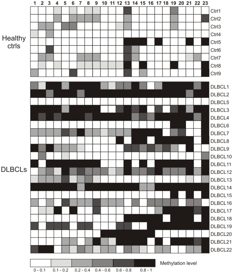 Bisulfite sequencing of the <t>TFPI-2</t> <t>CpG</t> island. Each box indicates a CpG dinucleotide and each line of boxes represents analysis of a single dog. Color gradation indicated the methylation level of each CpG site (0–1); 0, totally unmethylated; 1 totally methylated.