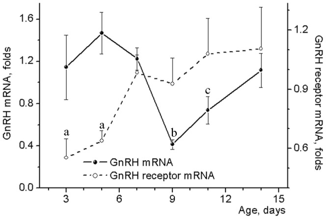GnRH and its receptor mRNA levels in the hypothalamus of neonatal male rats. Probes of cDNA were synthesized from total mRNA extracted from the anterior hypothalamic preoptic area of 3–14 day-old male rats. Probes were examined for GnRH and its receptor mRNA expression by the TaqMan assay-based real-time PCR. The comparative ddCT method was used to calculate mRNA expression relative to the beta-actin as an endogenous control. Data represent mean ± SEM of 6–8 individual animals. a p